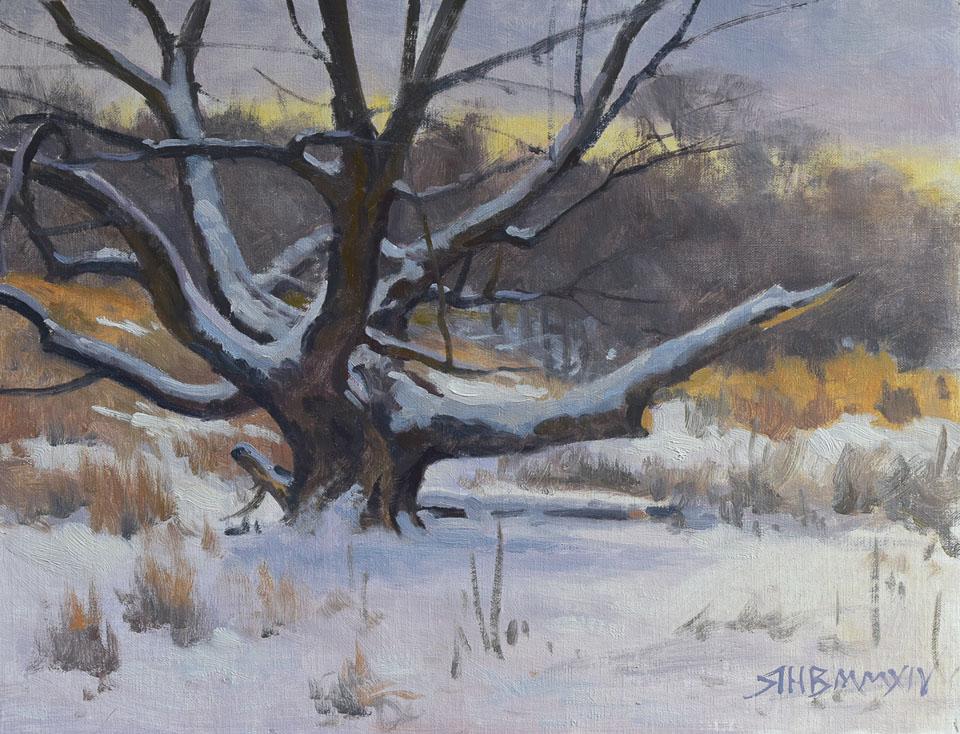 December-Snow-12x16.jpg