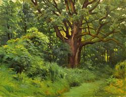 Oak-12x16.jpg