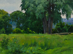 The-Cottonwood-12x16.jpg